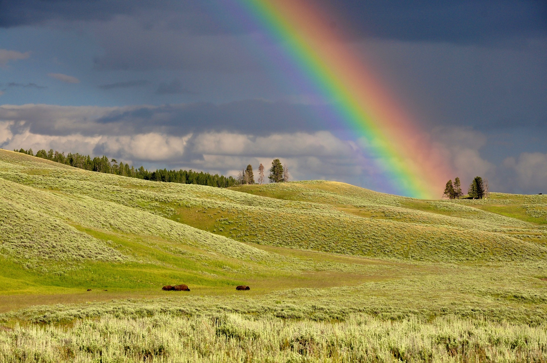 9 Tricks für mehr Regenbogen in deinem Leben