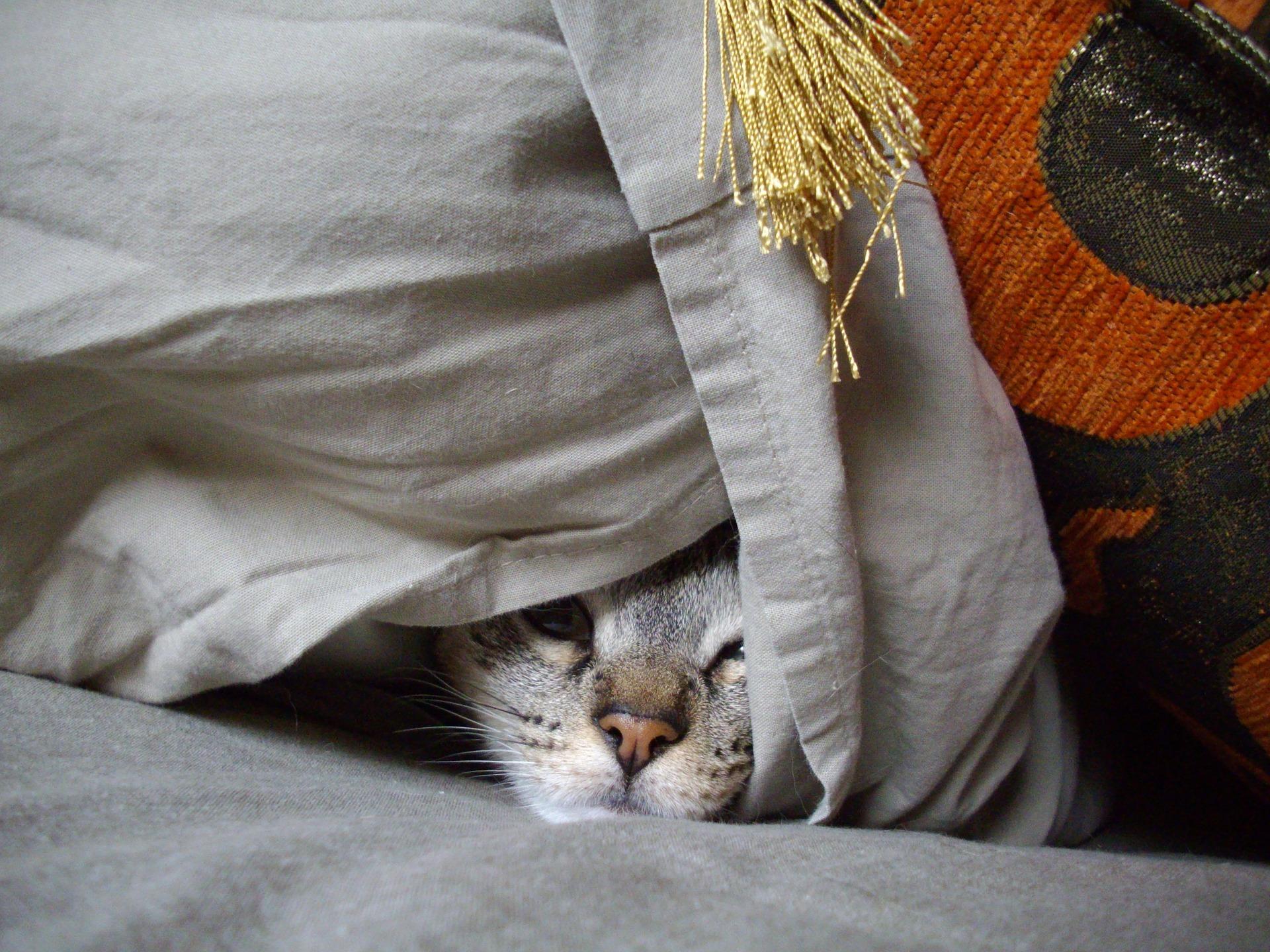Meine Motivation ist nicht gebrochen, ich habe sie mir selbst versteckt!