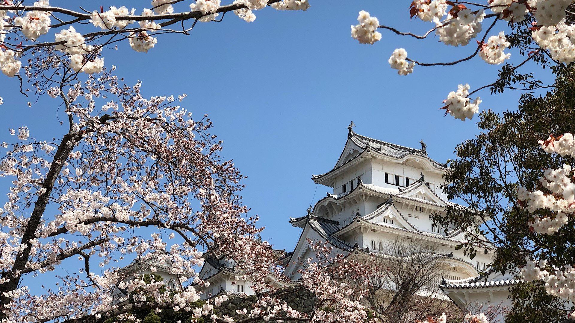 Tourist sein können, am Himeji-Castle