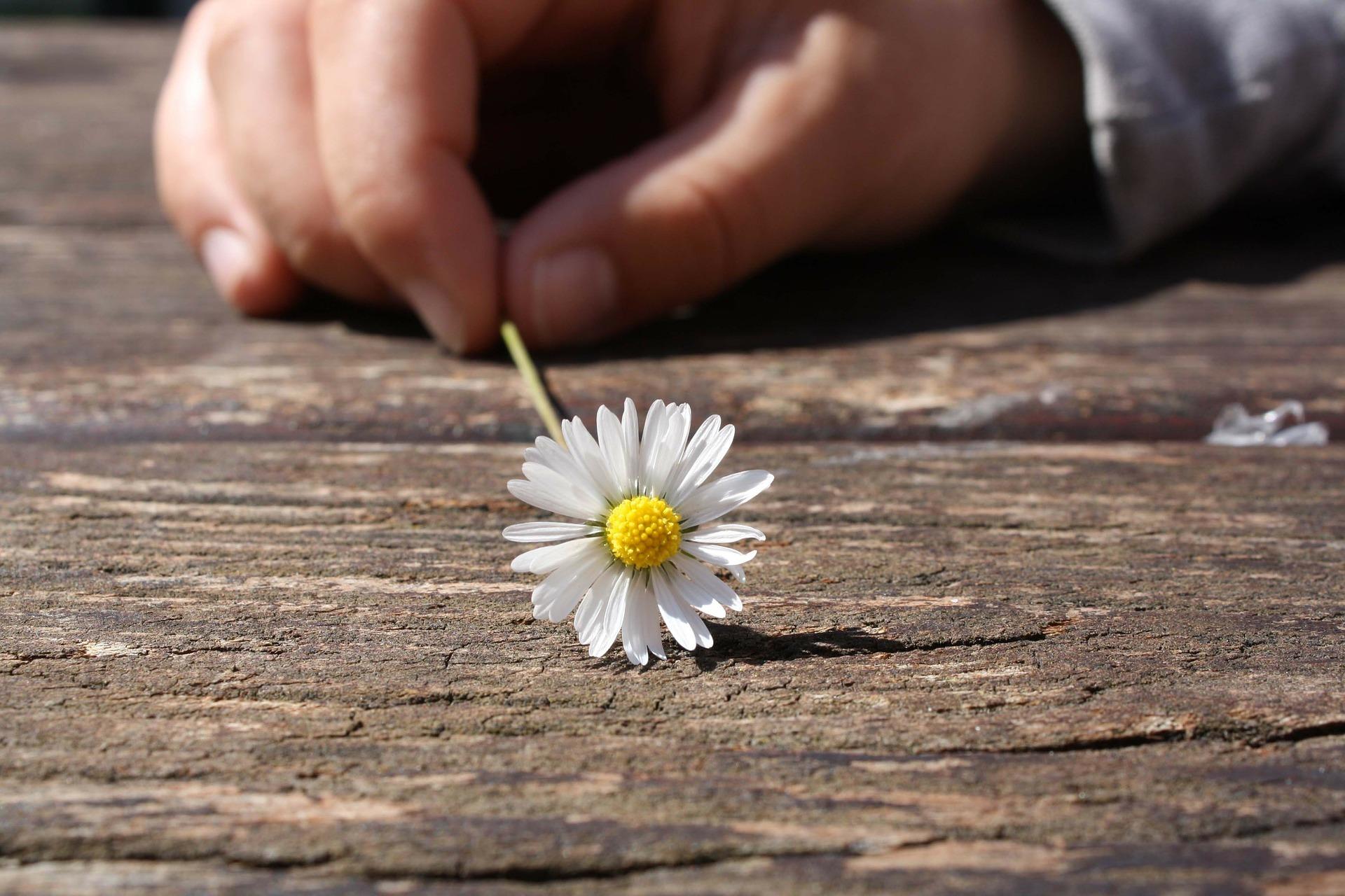 Nein mich macht nicht alles glücklich in meinem Leben, aber zumindest macht mich das meiste nicht mehr unglücklich.